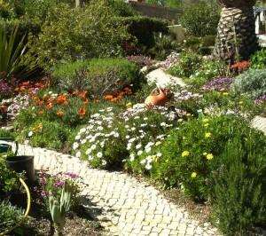 Med Garten